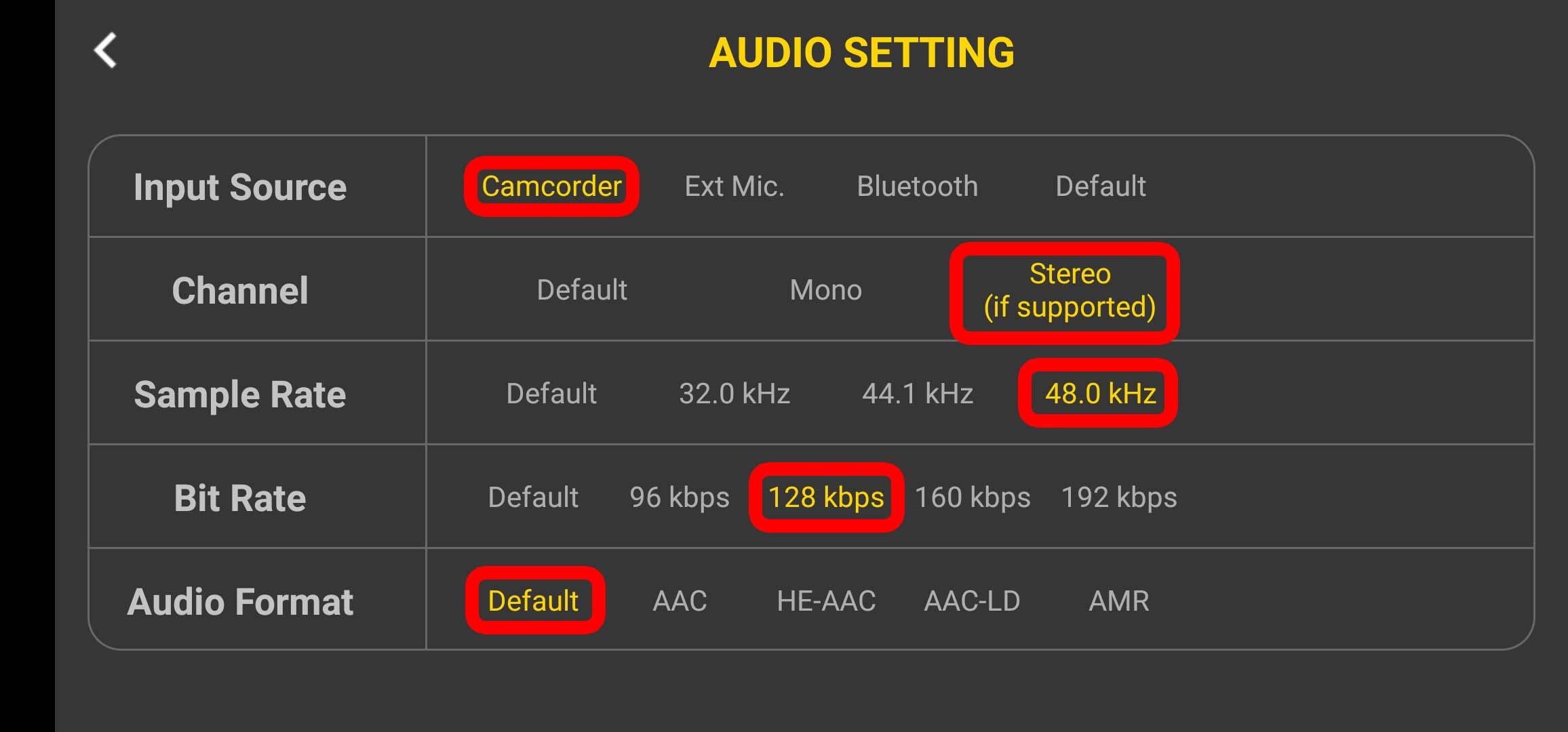 4k Camera Pro - Einstellungen bei Audio-Settings